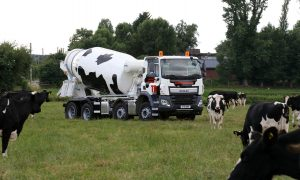 TG cow truck field pic 2